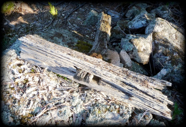 old-fence-w-sills-1 2013