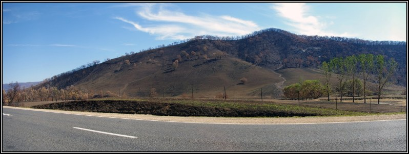 Panorama of the burnt Mudgegonga Hills one month after the February 2009 wildfire. Click on the photo for a larger view. Photo by Peter Neaum.