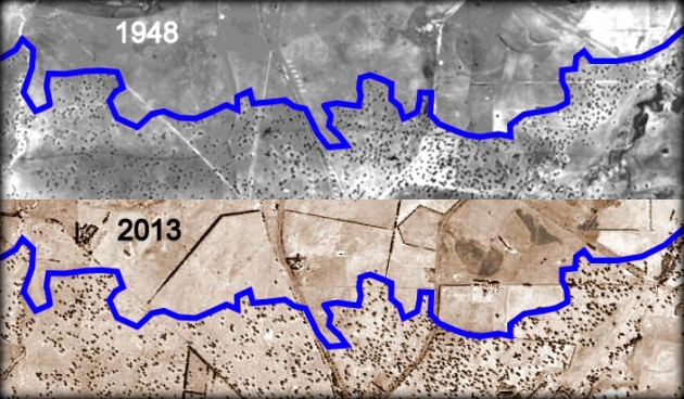 The western boundary of the Dunkeld woodlands in 1948 and 2013. The blue line was drawn on the 1948 air photo and copied onto the 2013 photo. The boundary has remained surprisingly stable over 65 years. This view is 7.3 kms wide. Click on the image to enlarge it.