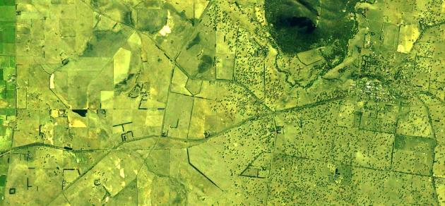 An aerial photo of the boundary between treeless grasslands and grassy woodlands in the Dunkeld region.