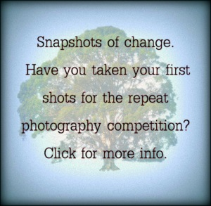 Don't forget the repeat photo monitoring competition that's running all year.