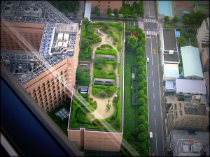 The legacy of Ulrich's research: calming gardens at Tokyo International Hospital. Source: Popular Mechanics.