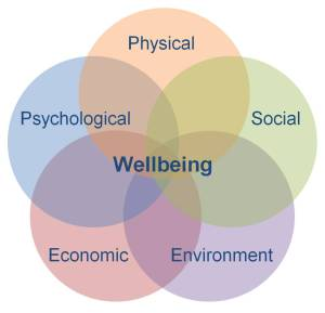 The wheel of human well being