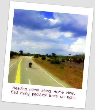 6 Street View Motor Bike
