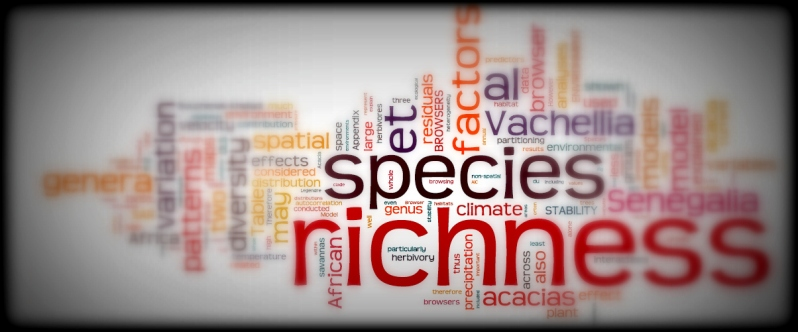ecology wordcloud