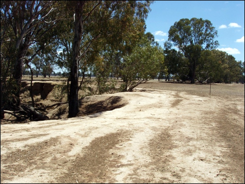 Baddaginnie 2007 Drought
