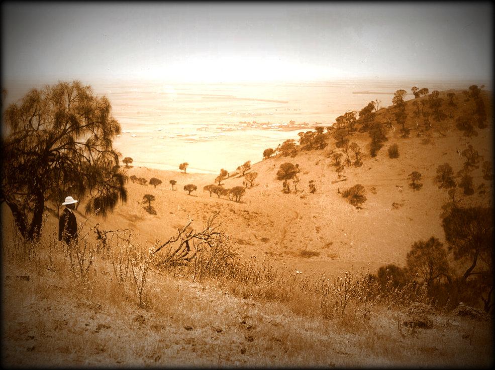 Location location location: the future of environmental history